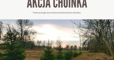 Wyjątkowa akcja w Krakowie. Daj drugie życie choince!